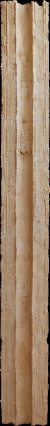 colonne3aa